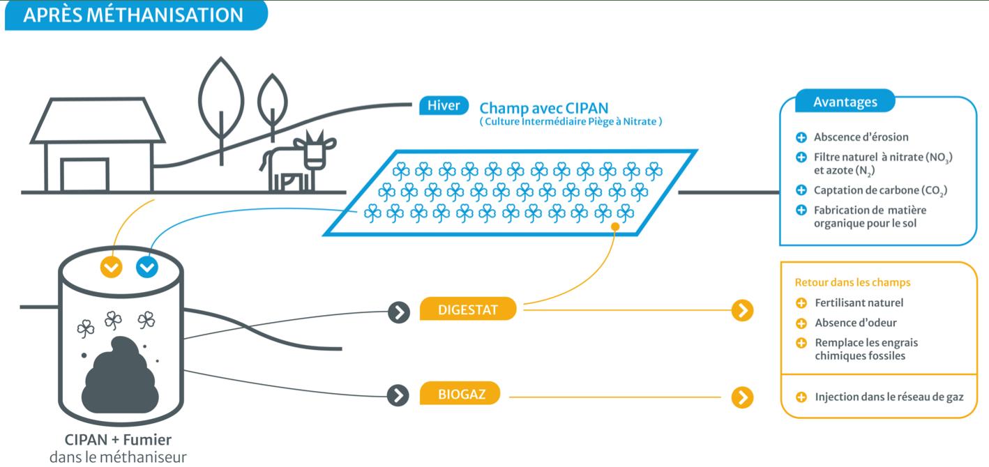 schema-methanisation