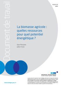fs-dt_-_biomasse_agricole_-_quelles_ressources_pour_quel_potentiel_energetique_-_29-07-21